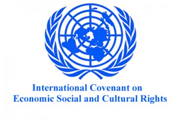 Submission to the Government Report under the International Covenant on Economic, Social and Cultural Rights.