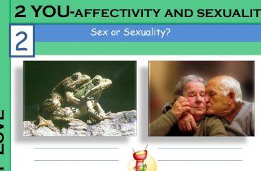 Vatican Sex education to be taught in Irish schools